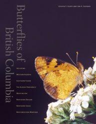 Butterflies-col-386x5001