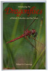 Dragonflies-colour-341x5001