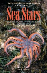 Seastar-col-323x5001