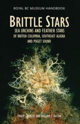 Brittle-rgb-321x5001